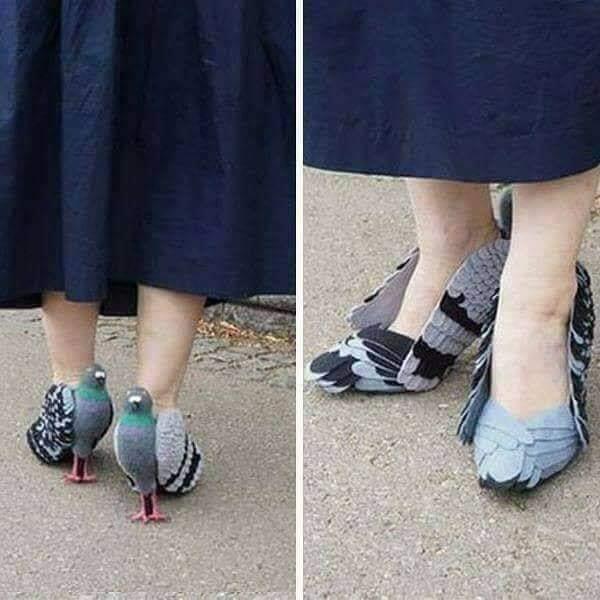 des chaussures nouveau cris DeYBIj